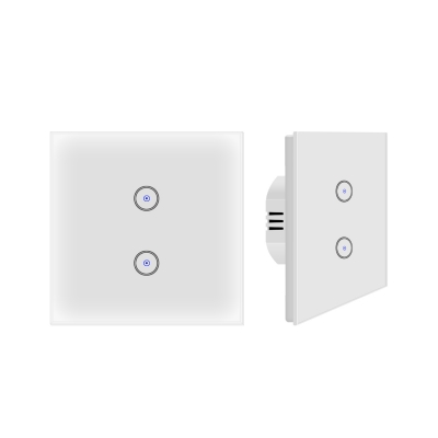 SM-SW101-2 Double switch
